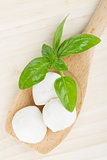 Mozzarella and basil
