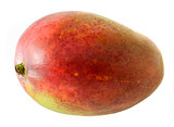 Large mango fruit on white background