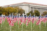 Flags on the Mall