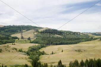 Cypress Hills