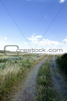 Small Dirt Road