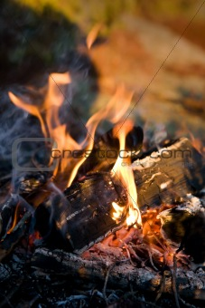 Campfire Detail