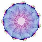 Plasmatic mandala