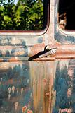 Antique Car Rust
