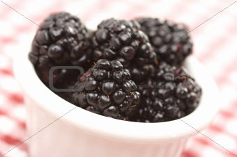 Blackberries in a Small Bowl