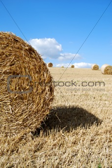Close photo of a hay bail