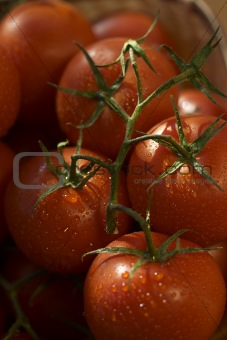 tomato and waterdrops