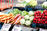 fresh healthy vegetables on market