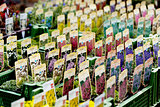 flowers assortement crop seed garden market