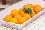 fresh orange fruits decorative on table in summer