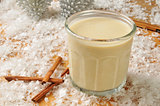 Cinnamon spice egg nog