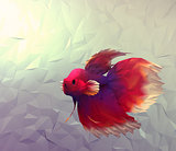 Wallpaper with betta siamese red, white and violet exotic fish in aquarium.