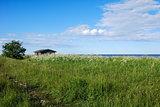 Sunny coast view