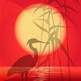The hunting heron
