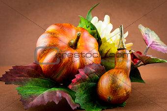 Autumn pumpkins and flowers