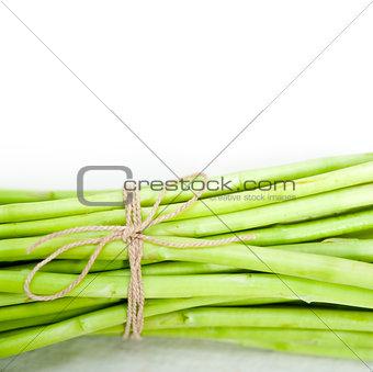 fresh asparagus over white