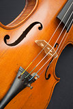 Violin against a black background