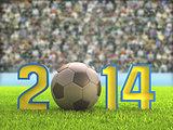 Football 2014 Stadium