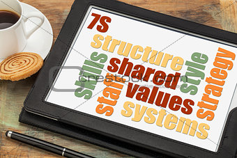 7S model for organizational culture