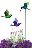 Decorative hummingbirds