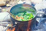 Forest currant tea in a pot on a fire