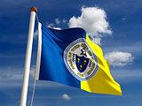 Trenton City Flag