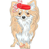 vector fashion dog Chihuahua breed smiling