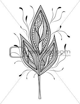 abstract leaf on white background