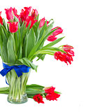 spring red tulips in vase
