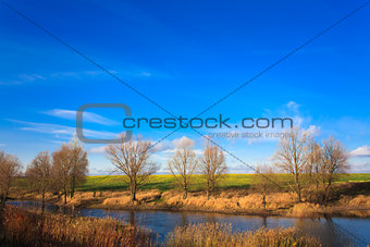 Autumn Landscape In Sunny Day