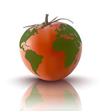 vector illustration of red tomato with planet earth