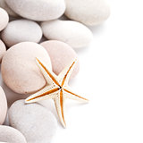 pile of stones and sea star