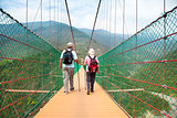 happy senior couple walking on the bridge in the nature park