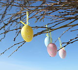 Easter eggs hanging on branches