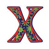 winter letter X