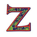 winter letter Z