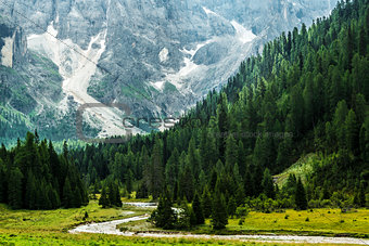 Forest and river in the valley, Dolomiti - Italy
