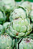 fresh green artichokes macro closeup on market outdoor