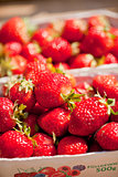 fresh delicious strawberries macro