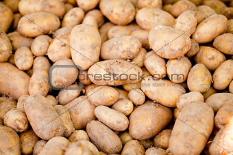 group of potatoes macro closeup market outdoor