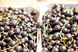 healthy fresh black currant macro cloceup on market outdoor
