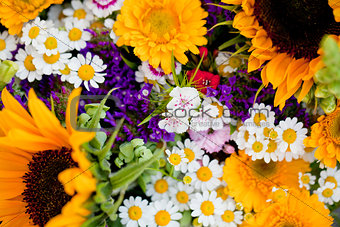 beautiful colorful collection of flowers spring summer celebration