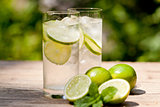 fresh cold refreshment drink mineral water soda with lime and mint