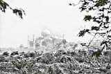 Taj Mahal in Black & White