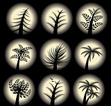 Collection of Stylized vector trees