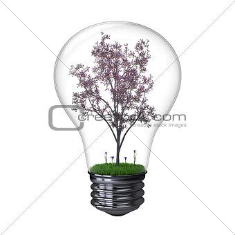 Blooming tree inside lightbulb