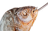 head of salted fish with a hook in his mouth on a white background