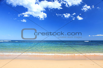 Australian Beach in summer