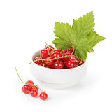 fresh red currant in porcelain bowl