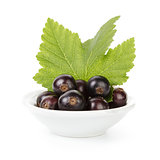 fresh black currant in porcelain bowl